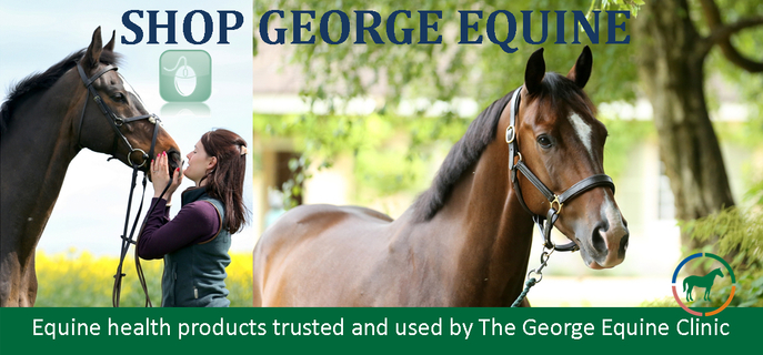 Online Shop at The George Veterinary Group
