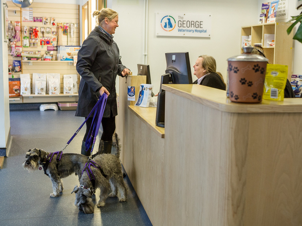 Requesting an appointment at The George Vets